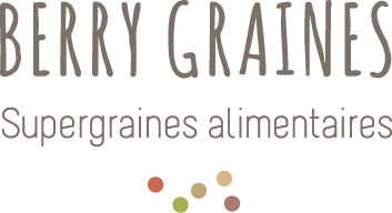 Logo berry graines